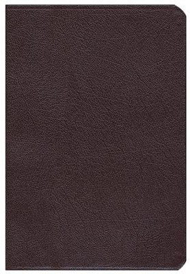 NIV Life Application Study Bible, Large Print, Bonded Leather, Burgundy, Thumb Indexed  -