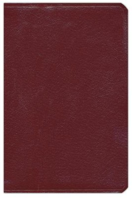 NIV Compact Bible, Giant Print, Leather-Look, Burgundy   -