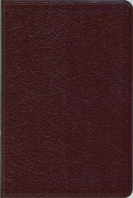 NIV Compact Thinline Bible, Burgundy - Slightly Imperfect  -