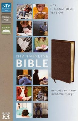 NIV Thinline Bible, Burgundy  -