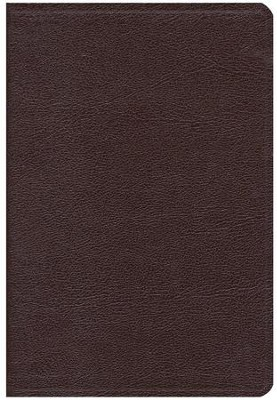 NIV Thinline Large-Print Bible, burgundy Thumb-Indexed   -