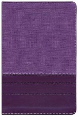 NIV Thinline Large-Print Bible--soft leather-look, purple/plum  -