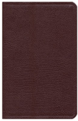 NIV Thinline, Compact, Reference Bible, Burgundy  -