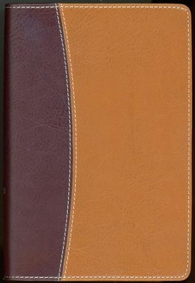 NIV Thinline, Compact, Reference Bible, Tan/Burgundy  -