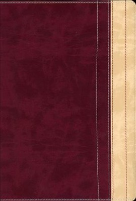 NIV Thinline Reference Large Print Dark Raspberry/Creme Brulee - Imperfectly Imprinted Bibles  -
