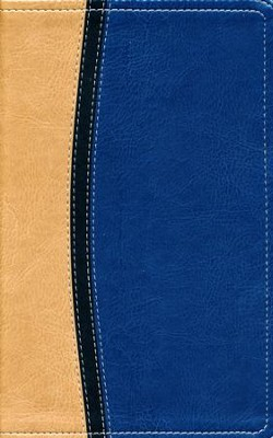 NIV Study Bible, Personal Size, Imitation Leather, Tan Blue  -