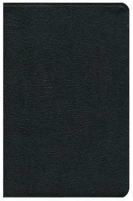 NIV Study Bible, Top Grain Leather, Black   -