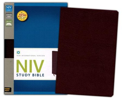 NIV Study Bible, Bonded Leather, Burgundy, Thumb Indexed - Slightly Imperfect  -