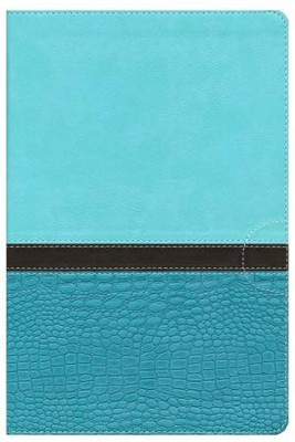 NIV Study Bible, Large Print, Imitation Leather, Turquoise Caribbean Blue  -