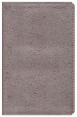 NIV Thinline Metallic Collection Bible, Bonded Leather, Silver  -