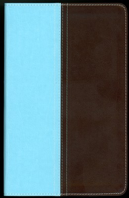 NIV and The Message Side-by-Side Bible, Personal Size: Two Bible Versions Together for Study and Comparison, Italian Duo-Tone, Turquoise/Chocolate  -