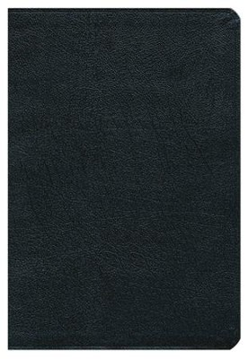 KJV and Amplified Side-by-Side Bible, Bonded Leather, Black, Large Print  -