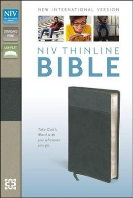NIV Thinline Bible, Imitation Leather, Black & Gray  -