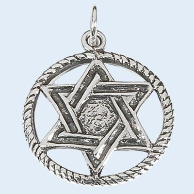 Star of David in Circle Necklace   -