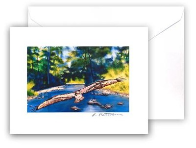Osprey Card and Envelope   -     By: Laura Petrisin
