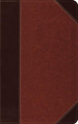 ESV Thinline Trutone Bible, brown/cordovan with portfolio design, Imitation Leather  -