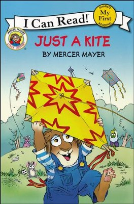 Little Critter: Just a Kite  -     By: Mercer Mayer     Illustrated By: Mercer Mayer