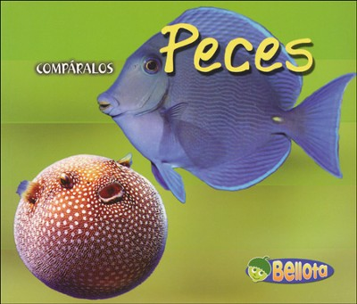 Peces, Fish  -     By: Tracey Crawford