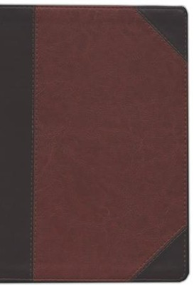 ESV Study Bible, TruTone, Brown/Cordovan Portfolio Design  -