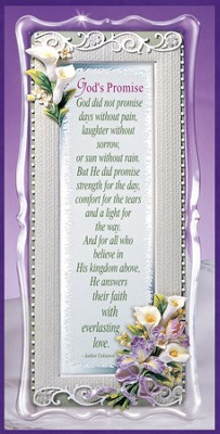 Gods Promise Framed Sentiment  -