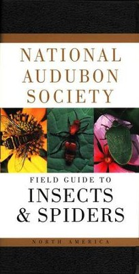National Audubon Society Field Guide to North American Insects and Spiders  -     By: Lorus Milne, Susan Rayfield, Margery Milne