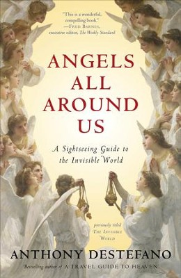 Angels All Around Us: A Sightseeing Guide to the Invisible World  -     By: Anthony DeStefano