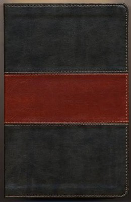 ESV Thinline Bible TruTone, Forest/Tan, Trail Design  -