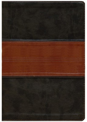 ESV Large Print Compact Bible (TruTone, Forest/Tan, Trail Design)  -