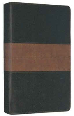 ESV Thinline Bible (TruTone, Black/Tan, Trail Design)  -