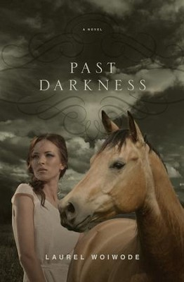 Past Darkness  -     By: Laurel Woiwode