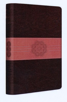 ESV Student Study Bible--soft leather-look, chocolate/coral with sash design   -
