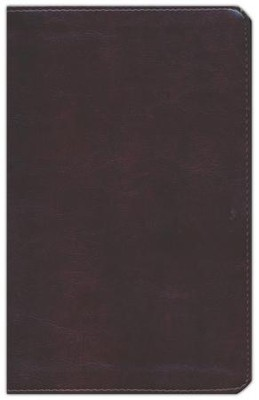 ESV Large Print Personal Size Bible--soft leather-look, mahogany  -