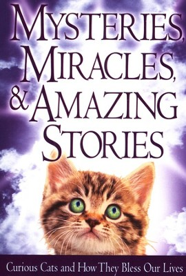 Mysteries, Miracles, & Amazing Stories Book  -