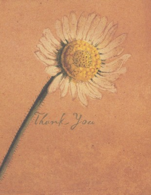 Thank You Card, Snail's Pace Series                         -     By: Ashley Verkamp