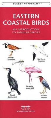 Pocket Naturalist: Eastern Coastal Birds   -