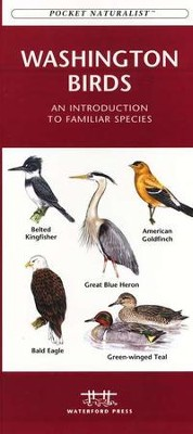 Washington Birds   -