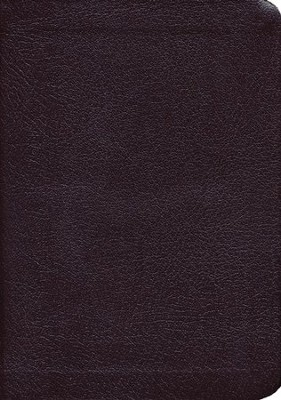 KJV Compact Reference Bible, bonded leather, burgundy  - Slightly Imperfect  -