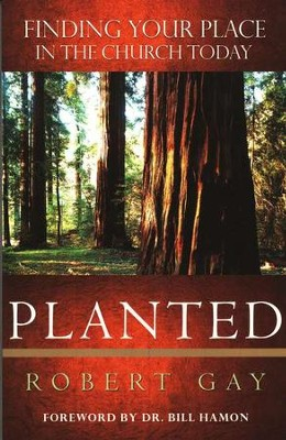 Planted: Finding Your Place in the Church Today  -     By: Robert Gay