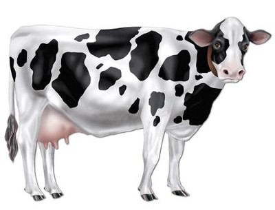 Jointed Cow Decoration  -