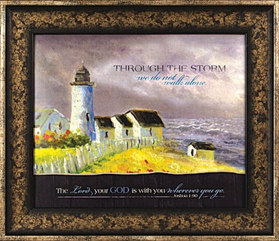 Through the Storm We Do Not Walk Alone Framed Print  -