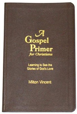 A Gospel Primer for Christians: Learning to See the Glories of God's Love  -     By: Milton Vincent