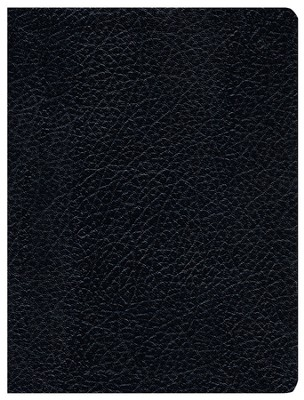 Biblia de Estudio Apologetica RVR 1960, Piel Imit. Negra Ind.  (RVR 1960 Apologetics Study Bible, Imit. Leather Black Ind.)  -