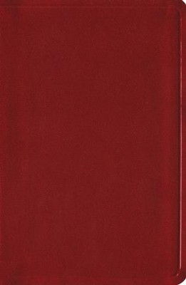 Biblia &#161Colormax! RVR 1960, Granate Radiante  (RVR 1960 Colormax! Youth Bible, Red)  -
