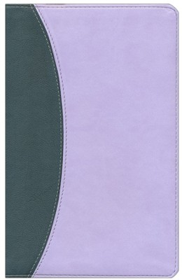 KJV UltraThin Reference Bible, Gray & Periwinkle Simulated Leather  -