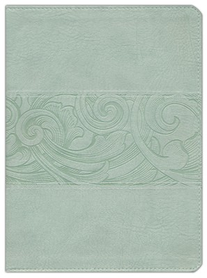 KJV Study Bible, Soft Green LeatherTouch  -