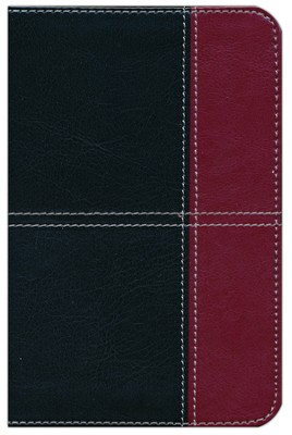 KJV Compact Ultrathin Bible, Black and Burgundy Leathertouch  -