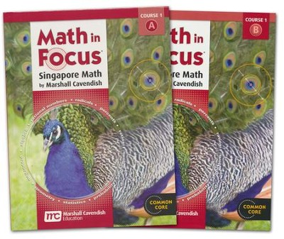 Math in Focus Grade 6 Course 1 Student Book Bundle A and B Set  -