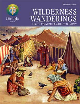 LifeLight: Wilderness Wanderings Leaders Guide  -     By: Mark Stirdivant