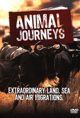 Animal Journeys: Extraordinary Land, Sea and Air Migrations DVD  -