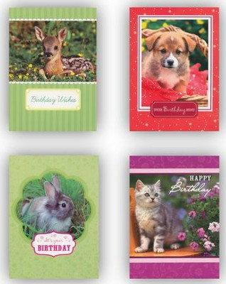 Animals Birthday Cards, Box of 12  -